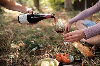 Shoot Domaine Breton_Contenus vin lifest