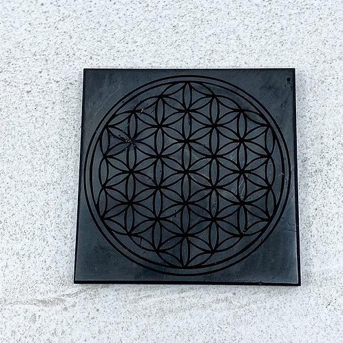 Tile Polished (1 side) 100mm X 100mm X 10mm Engraved