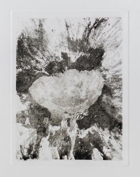 senza titolo 2, 35.4x24.8 cm, incisione