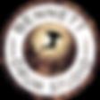 BDS Logo- half transparent.png