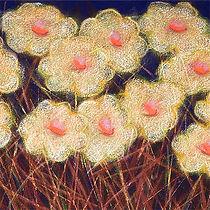 mountain daisies, thumbnail,