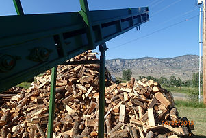 processed pile of big sticks cord wood