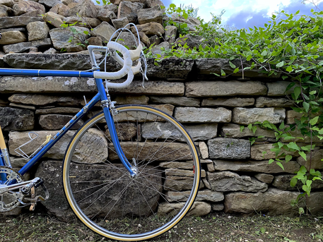 Olmo Competition C