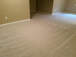 Carpet Cleaning For a Move out Clean