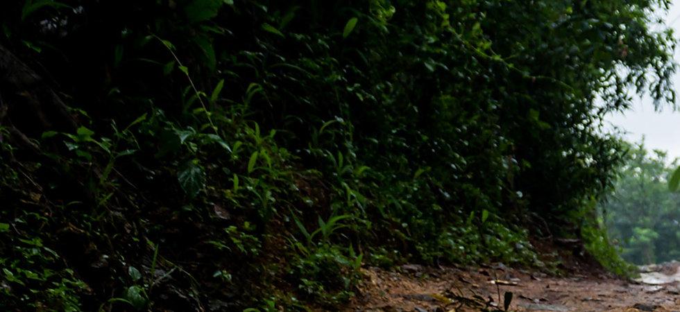 Dirtyroad_banner_img.jpg