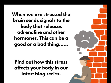 How Does Stress Work?