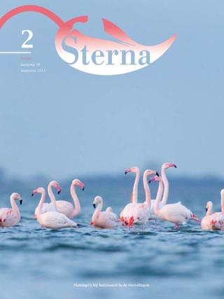 Sterna 2013 nr 2