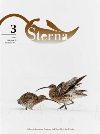 Sterna 2015 nr 3