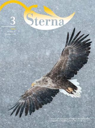 Sterna 2016 nr 3/3