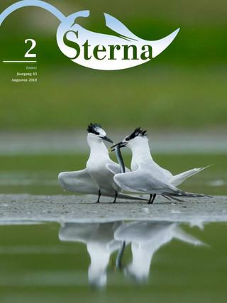 Sterna 2018 nr 2