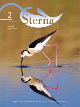 Sterna 2012 nr 2