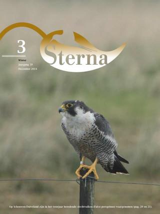 Sterna 2014 nr 3