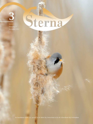 Sterna 2012 nr 3/4