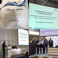 BRC - ICSOBA_2019 (Rússia).jpg