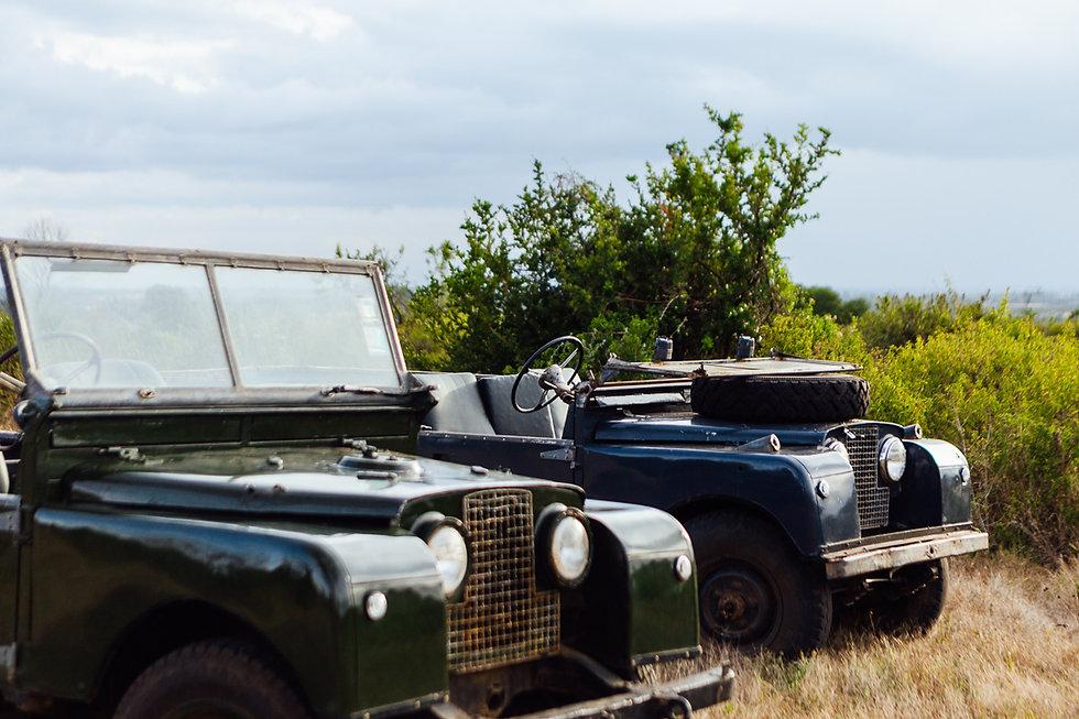 Safari Series-201.jpg