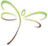 Dragonfly Icon - color.png