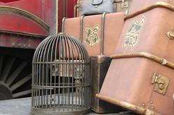 Wizarding World of Harry Potter Hollywood (17)_800.jpg