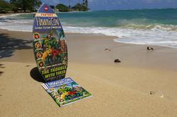 HawaiiCon 2016_800.jpg