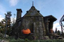 Wizarding World of Harry Potter Hollywood Hagrid's Hut (1)_800.jpg