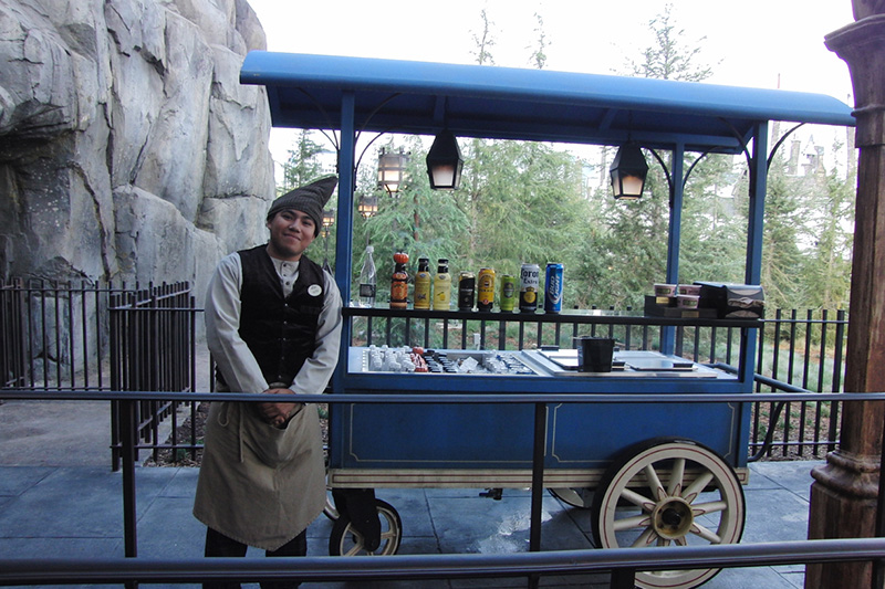 Wizarding World of Harry Potter Hollywood (11)_800.jpg