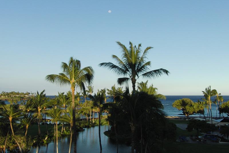 HawaiiCon 2016 (3)_800.jpg