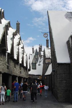 Wizarding World of Harry Potter Hollywood (20)_800.jpg