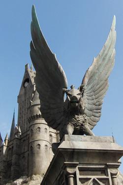 Wizarding World of Harry Potter Hollywood (8)_800.jpg