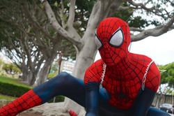 FCBD 2016 Comic Bug Spiderman Cosplay