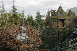 Wizarding World of Harry Potter Hollywood Hippogriff_800.jpg