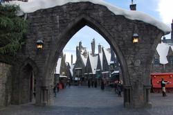Wizarding World of Harry Potter Hollywood (3)_800.jpg
