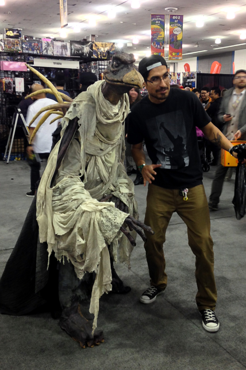 Silicon Valley Comic Con 2016 Dark Crystal cosplay_PSE_800.jpg