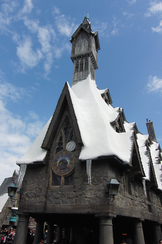 Wizarding World of Harry Potter Hollywood (18)_800.jpg