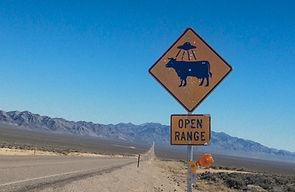 wwn_roadtrip_alien_cow.jpg