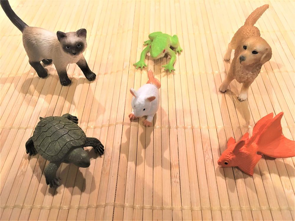 DIY Atelier Montessori : Les animaux de compagnie, les figurines choisies