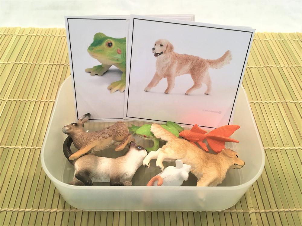 DIY Atelier Montessori : les Animaux de Compagnie (PDF)