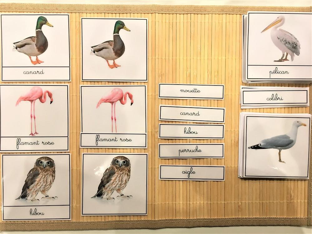 DIY Atelier Montessori : Et Volent dans le Ciel, les cartes classifiées