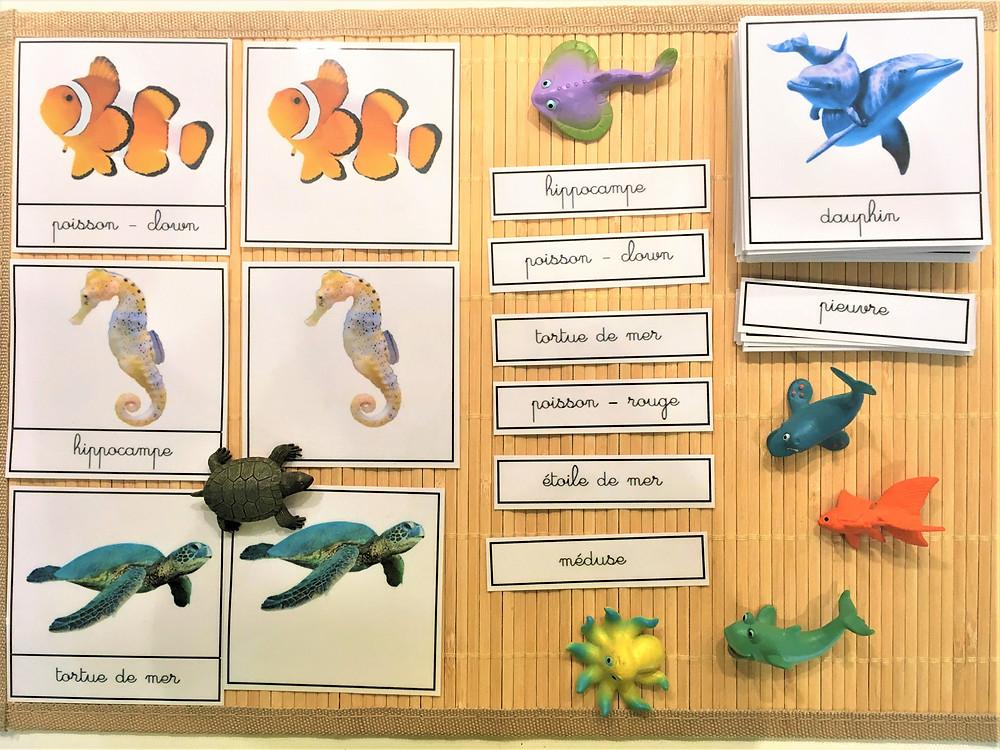 DIY Atelier Montessori : 20 000 Lieues sous les Mers (PDF)