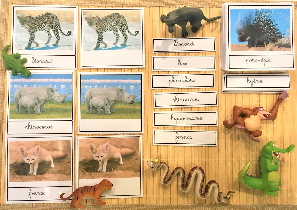 DIY Atelier Montessori : Les Animaux de la Savane (PDF)