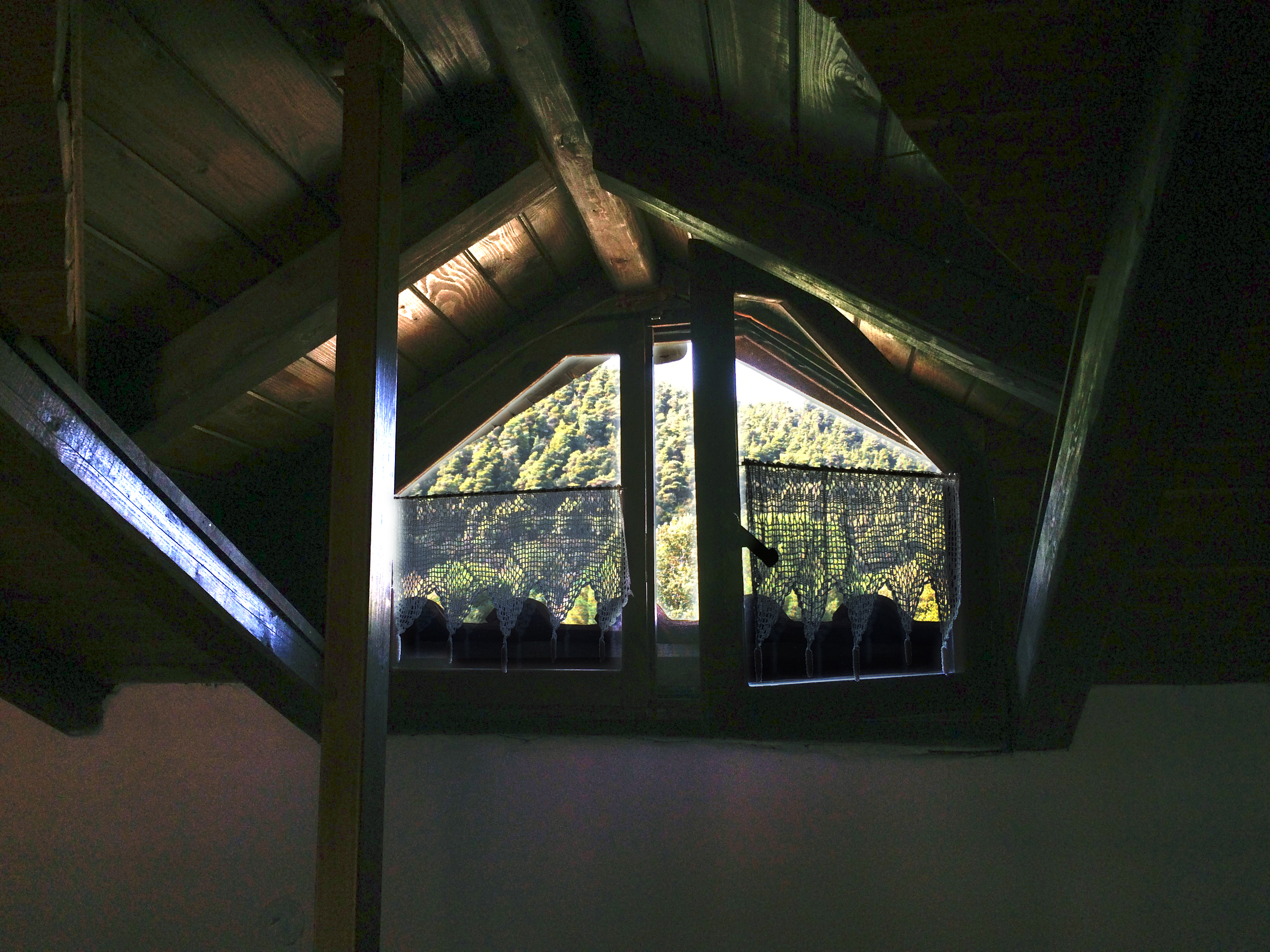 Mezzanine window to the forest