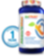 ABSORBMAX ADVANCED DIGESTIVE ENZYME COMPLEX