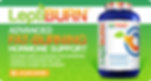 LEPTIBURN ADVANCED FAT BURNING HORMONE SUPPORT