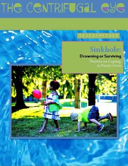 SinkholeCoverSnip