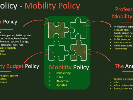 Fleet Dating: e-car policy & mobility policy: the winning duo?