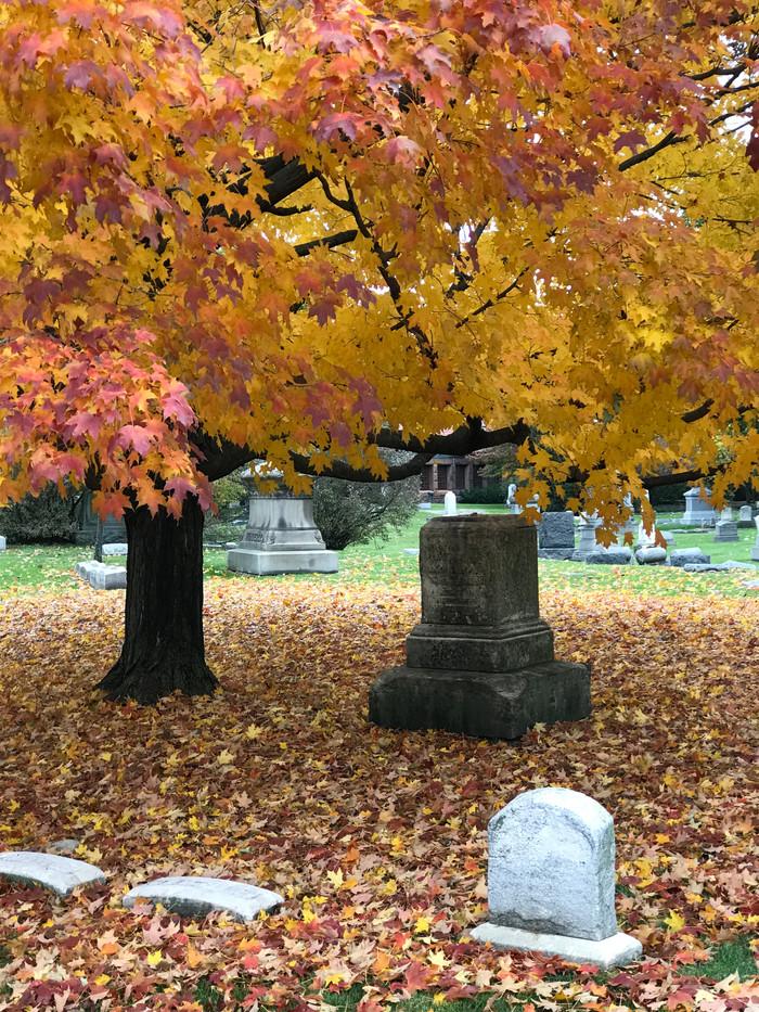 Прогулянка історичним цвинтарем Ґрейсленд в Чикаго.