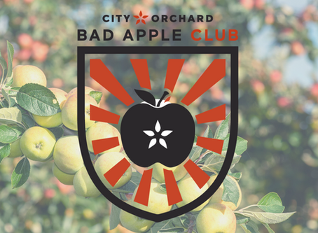 Introducing: The Bad Apple Club!