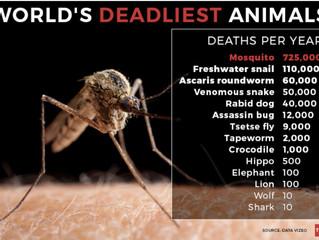 Mosquito-fighting Drones