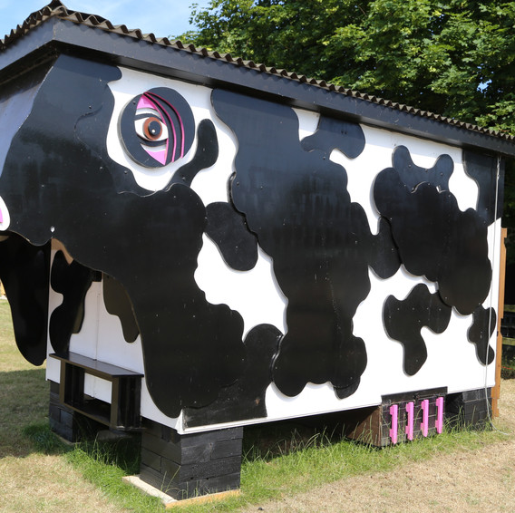 Daisy the Cow Shed