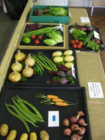 village show vegetables.jpg