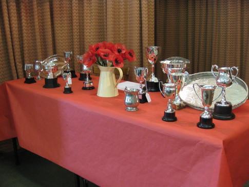 village show cups.jpg