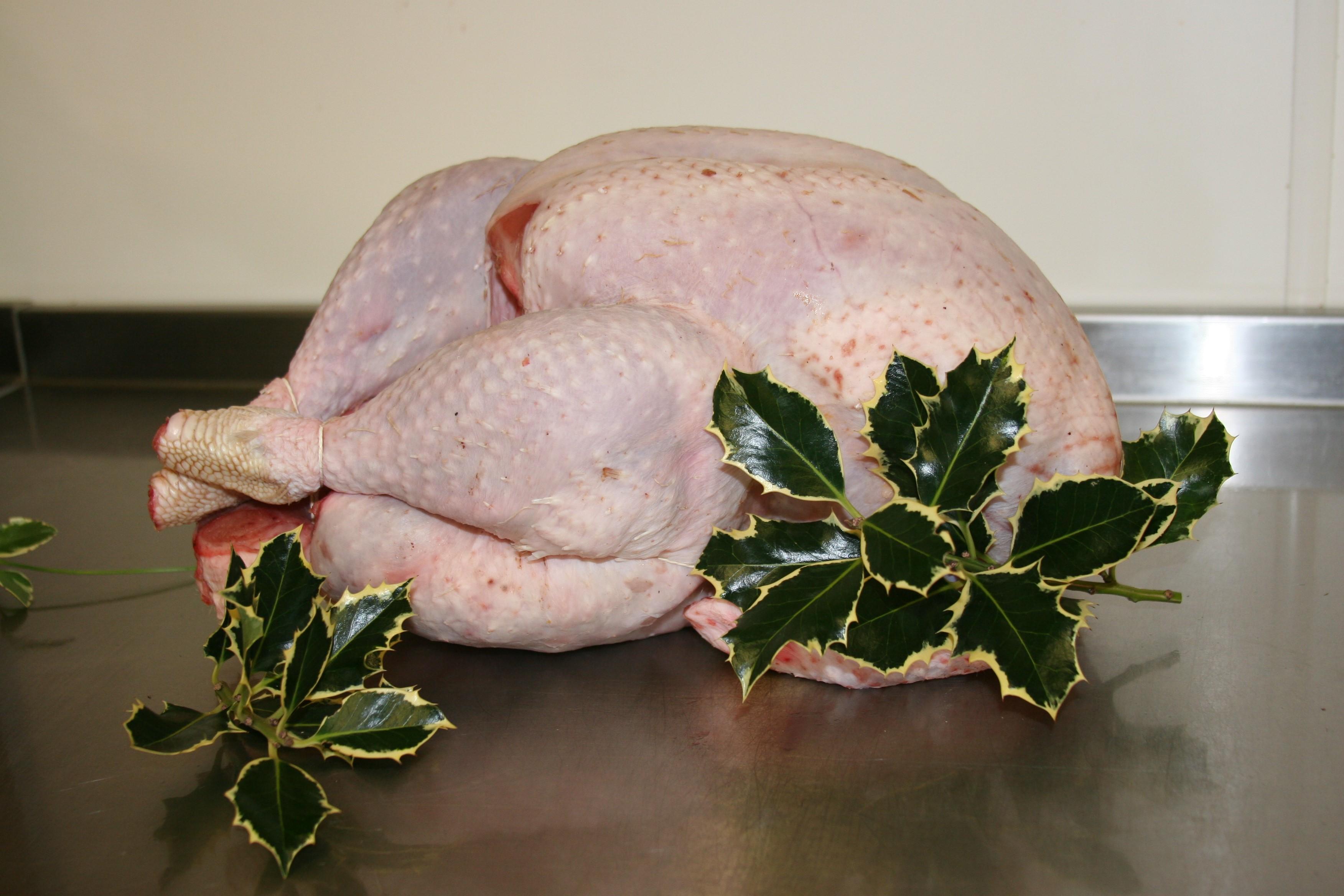 Turkeys for Christmas